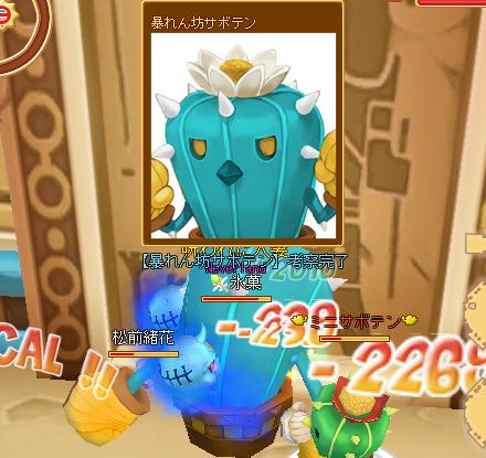 dv_0551a.jpg